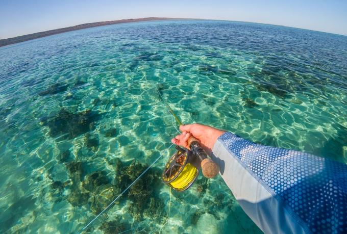 Flyfishing in paradise
